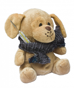 teddy-242885_1280