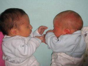 תאומים1